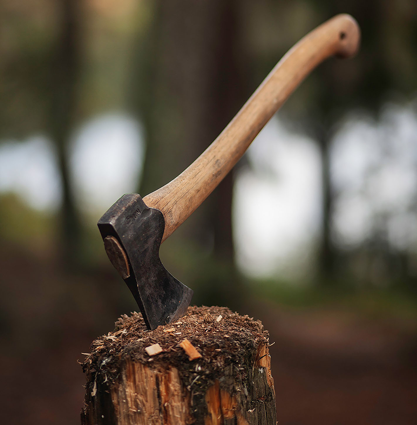 Gränsfors Bruk – Small Forest Axe